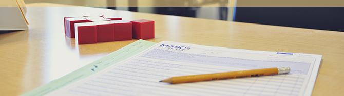 Educational Consultations